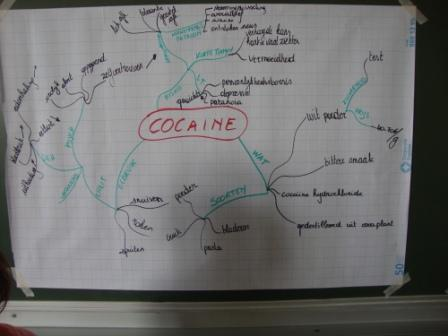 trainingblankenberge2011brainmapcocaine1